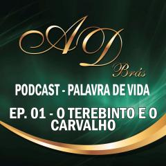 PodCast – PALAVRA DE VIDA – Episódio 01