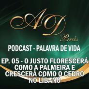 Episódio 05 – PodCast – PALAVRA DE VIDA