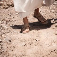Evangelização: a urgência de uma tarefa