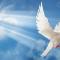 Os dons espirituais à luz da bíblia